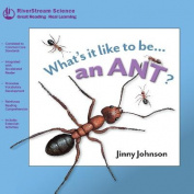 An Ant?