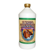 Buried Treasure 0722322 70 Plus Plant Derived Minerals - 32 fl oz