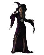 Sorceress Teen Halloween Costume - One Size