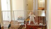 Cardinal EX5-W Expandable Pet Gate - White