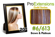 Brybelly Holdings PRCT-20-6613 No. 6-613 Chestnut Brown with Platinum Highlights Pro Cute
