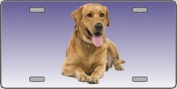 LP-2174 Yellow Labrador Retriever Dog Pet Novelty Licence Plates- Full Colour Photography Licence Plates