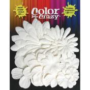 Colour Me Crazy Flower Layers 16/Pkg-White Assorted 2.5cm - 10cm