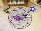Fanmats 00588 University Of Wisconsin-Whitewater Soccer Ball Rug