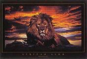 Hot Stuff 445-24x36-AN Lion Poster