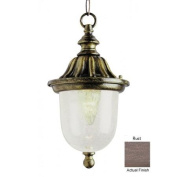 Trans Globe Lighting 4185 RT 1 Light Hanging Lantern - RUST
