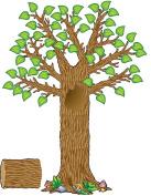 Teacher Created Resources TCR4405 Seasonal Tree Bb Set