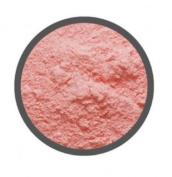 Sandtastik Plas5Lbbagred Sandtastik Plastermix Plaster Casting Compound Red - 2.3kg