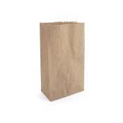 Paper Bags 12cm x 22cm 40/Pkg-Kraft