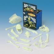US Toy Company MU75 Box Of Bones