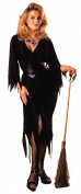 Bewitching Witch Adult Halloween Costume - One Size Up to Women's 12