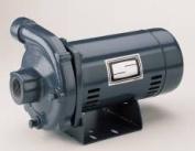 Quality Home Items 521317 .5 Hp High Head Centrifugal Pump