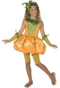 Buyseasons Precious Pumpkin Child Costume 4-6 Sm