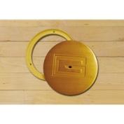 Gared Sports 6432 20cm . x 17cm . Swivel Cover Plate - Brass