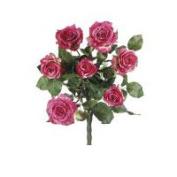FBR054-RO-TT 21.5 in. Two Tone Rose Confetti Rose Bush X7- Case of 1