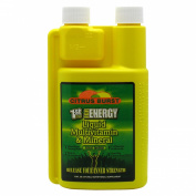 1st Step For Energy Citrus Burst Liquid MultiVitamin - 16.0 fl oz