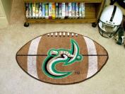 FANMATS 4789 UNC North Carolina - Charlotte Football Rug 60cm . x 90cm .