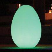 Main Access 131776 Colour Changing Waterproof LED Light - Genesis Egg