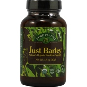 Pure Planet 0483479 Just Barley - 40ml