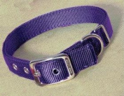 Hamilton Pet Company - Double Thick Nylon Dog Collar- Hot Purple 1 X 26 - DD 26PU