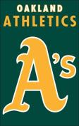 The Party Animal AFOAK Athletics 44x28 Applique Banner