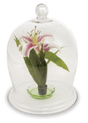Achla VBJ-02 Large Bell Jar - Clear Glass