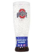 Duck House Ohio State Buckeyes Crystal Pilsner Glass