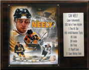 C and I Collectables 1215NEELYST NHL Cam Neely Boston Bruins Career Stat Plaque