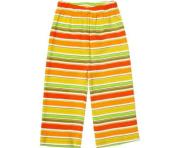 Zutano Fruit Stripe Pants