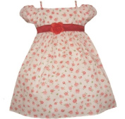 Baby and Toddler Summer Flower Dress