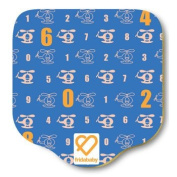 FridaBaby Infant Foam Play Mat