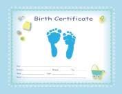 TenLil'Imprints Footprint Birth Kit