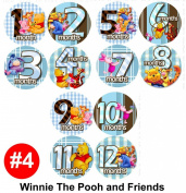 WINNIE POOH FRIENDS Baby Month Onesie Stickers Baby Shower Gift Photo Shower Stickers, photo prop by OnesieStickers
