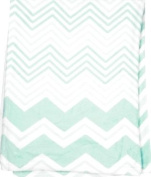 Manual Woodworkers and Weavers Chevron Baby Blanket Throw