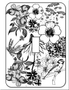 Boutique Beautiful Black White Flower Switch Plate Covers