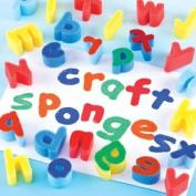 Lower Case Alphabet Sponges