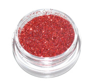 Red Sparkle Eye Shadow Loose Glitter Dust Body Face Nail Art Party Shimmer Make-Up