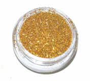 Gold Eye Shadow Loose Glitter Dust Body Face Nail Art Party Shimmer Make-Up
