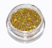 Gold Laser Eye Shadow Loose Glitter Dust Body Face Nail Art Party Shimmer Make-Up