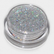 Silver Laser Eye Shadow Loose Glitter Dust Body Face Nail Art Party Shimmer Make-Up