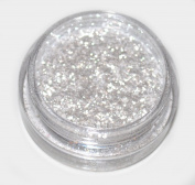 Snow White Diamond Eye Shadow Loose Glitter Dust Body Face Nail Art Party Shimmer Make-Up