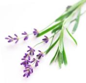Abbey Essentials Lavender Water 250 ml