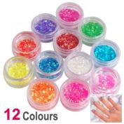12 Colours Nail Art Glitter Dust Powder Set