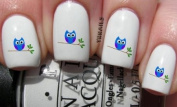 Branch Owl - Nail Decals by YRNails