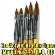 5 Pieces of Wooden Pro Acrylic Brushes Set (Model No.2,4,6,8,10) CODE