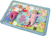 Fisher-Price Discover 'n Grow Jumbo Baby Playmat