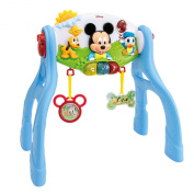 Mickey Activity Gym