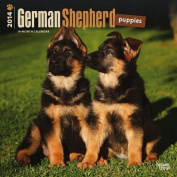 German Shepherd Puppies 2014 Wall Calendar