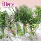 Herbs 2014 Wall Calendar
