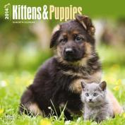 Kittens & Puppies 2014 Wall Calendar